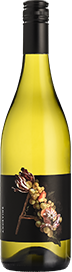 Andevine Hunter Chardonnay 2018