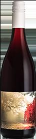 Nodus Tollens Pinot Noir 2018