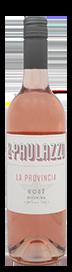 R. Paulazzo La Provincia Rose 2021