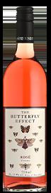 Sam Plunkett The Butterfly Effect Rose 2020